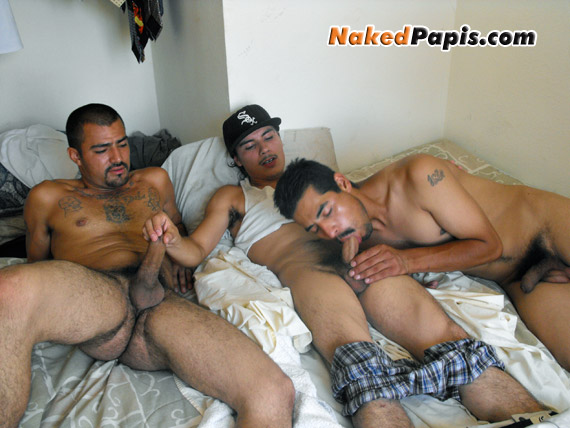 Sexy straight latino men